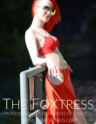 foxtress_gallery038